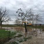 После кише поплављена дворишта