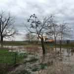 Posle kiše poplavljena dvorišta