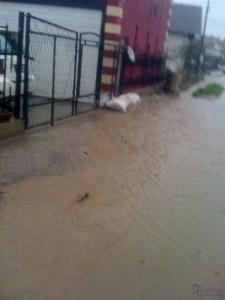 Poplave 7 mart 2015