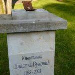 Коме је засметала биста Владете Вуковића?