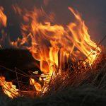 Опет пожар у селу Томанце