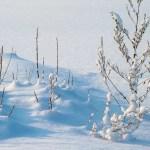 Комунална служба спремно дочекује снег у фебруару