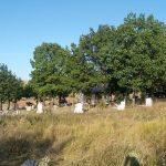 Роми из Ливађа, Добротина и Гуштерице немају своје гробље