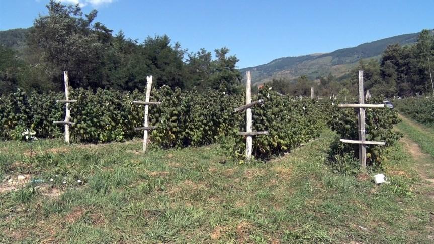 Uspešna sezona za malinare u opštini Štrpce