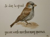 You are worth more than many sparrows