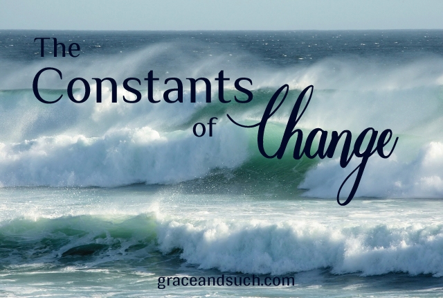 The Constants of Change