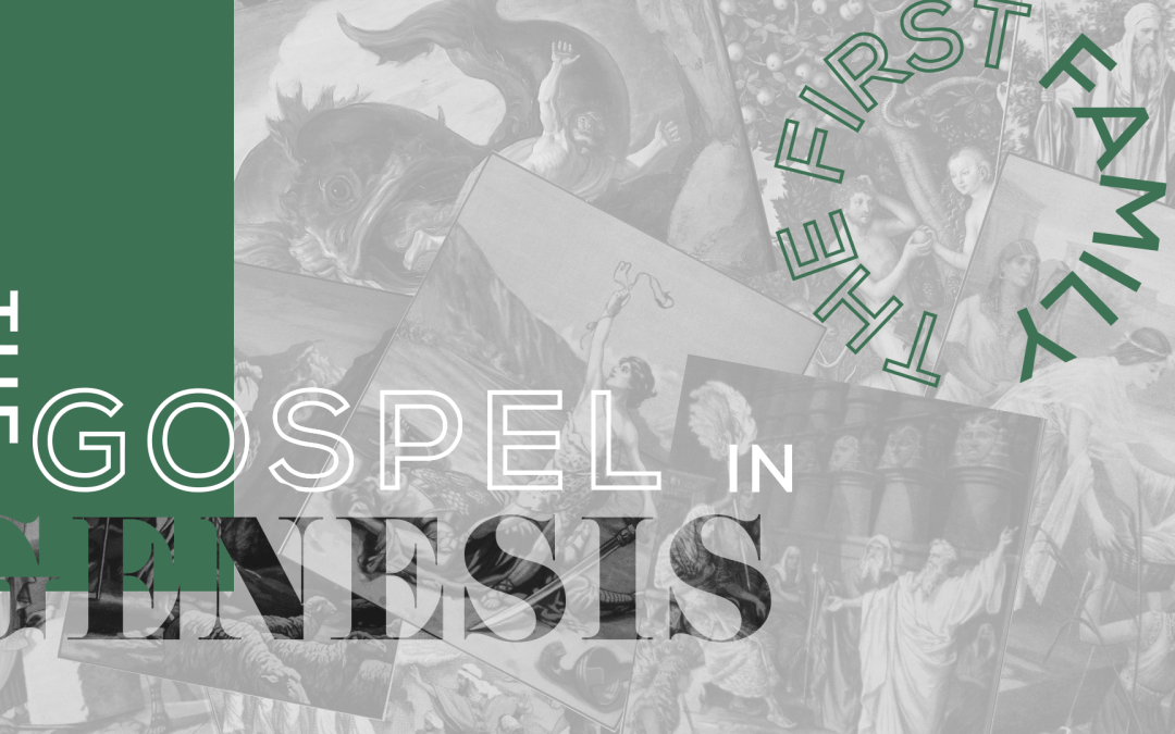 Healing and Reconciliation 2.17.19 SERIES: The Gospel in Genesis: The First Family