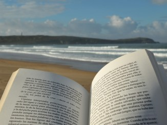 Read on a Beach