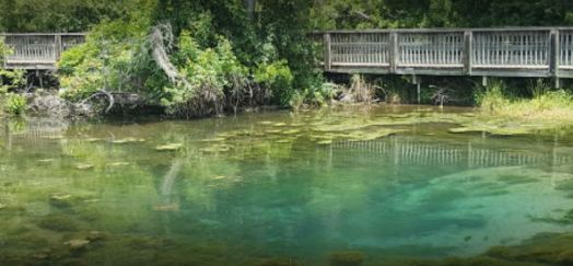Mineral Spring at Magnolia State Park