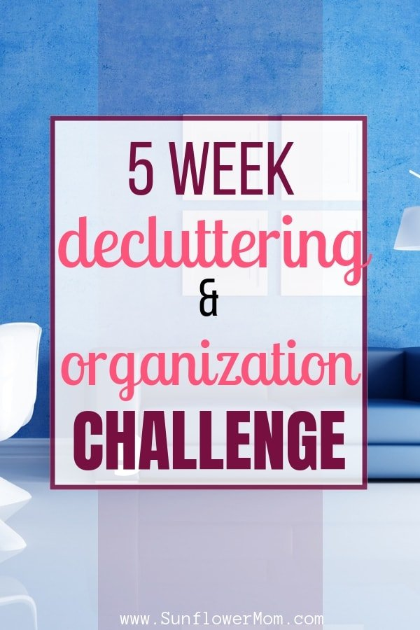 Imagine if you could have the main areas in your house fully organized and decluttered in just 5 weeks? I\'ve teamed up with four other bloggers to give ideas and strategies to help you tackle these main areas: Overall home organization, Desk/Office Space, Closets, Kitchen, Bathroom. Grab your FREE download and dig in! #declutter #organization #sunflowermom
