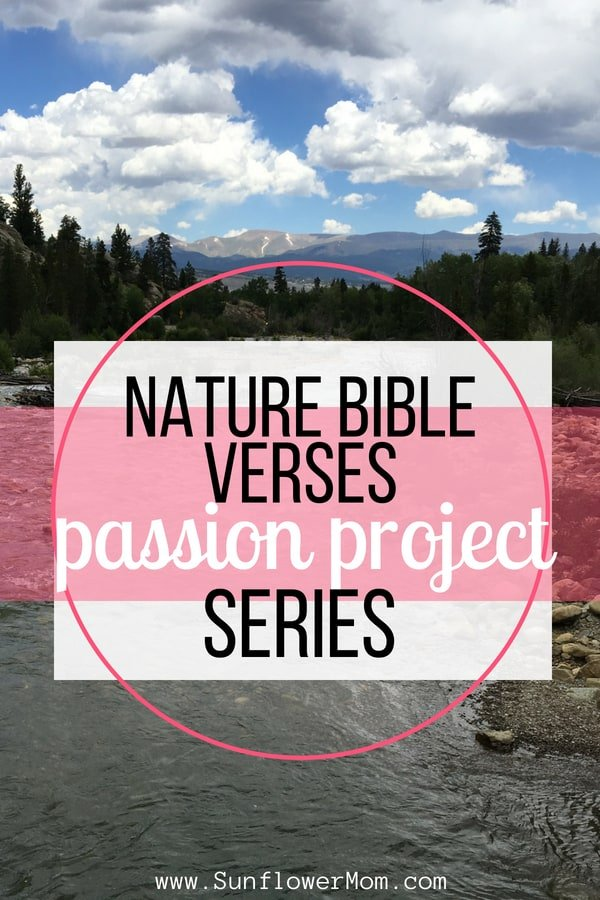 The Best Nature Bible Verses to Find God in Nature