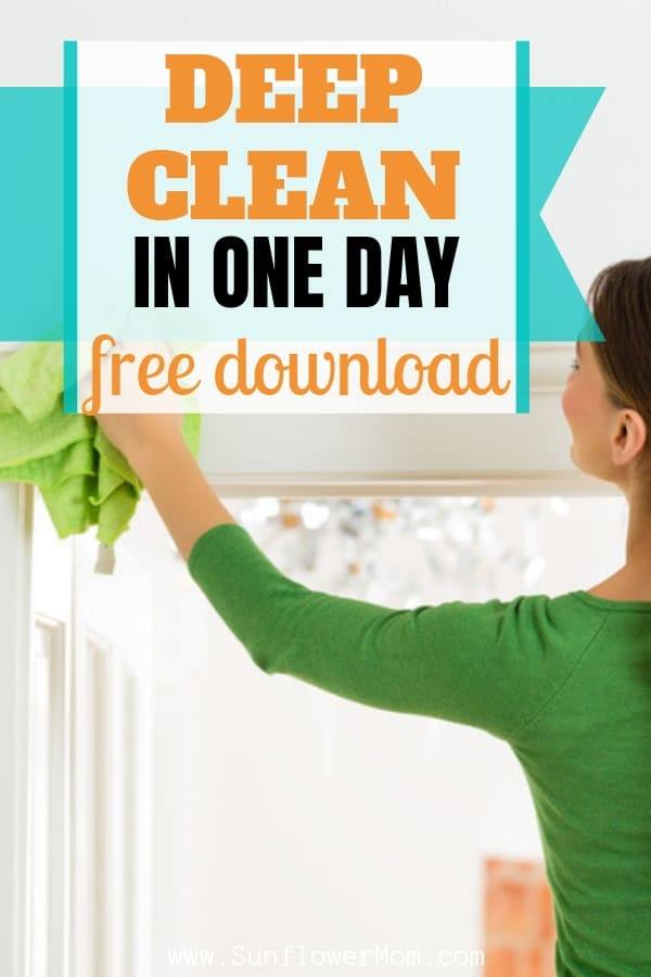 Spring Clean Your House in One Day: Free Download