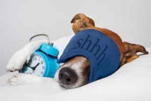 tips for good nights sleep
