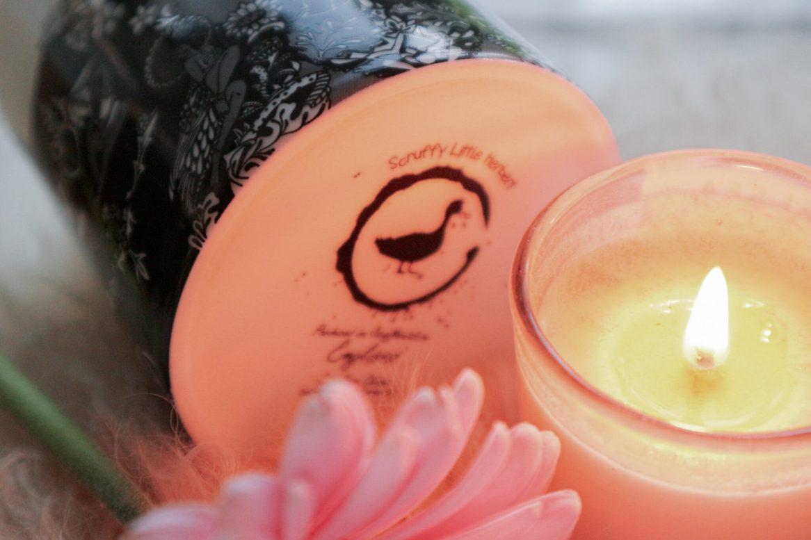 Graceful Blog - Scruffy Little Herbert empowering design mugs