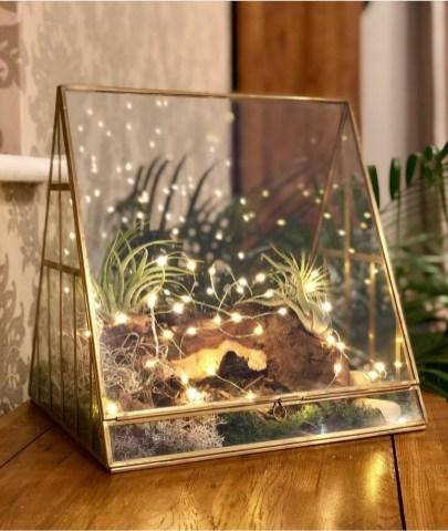 The Copper Cacti illuminated terrarium