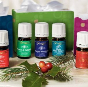 Holiday Mini Kits
