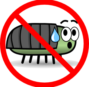 Essential oils bugs don't like