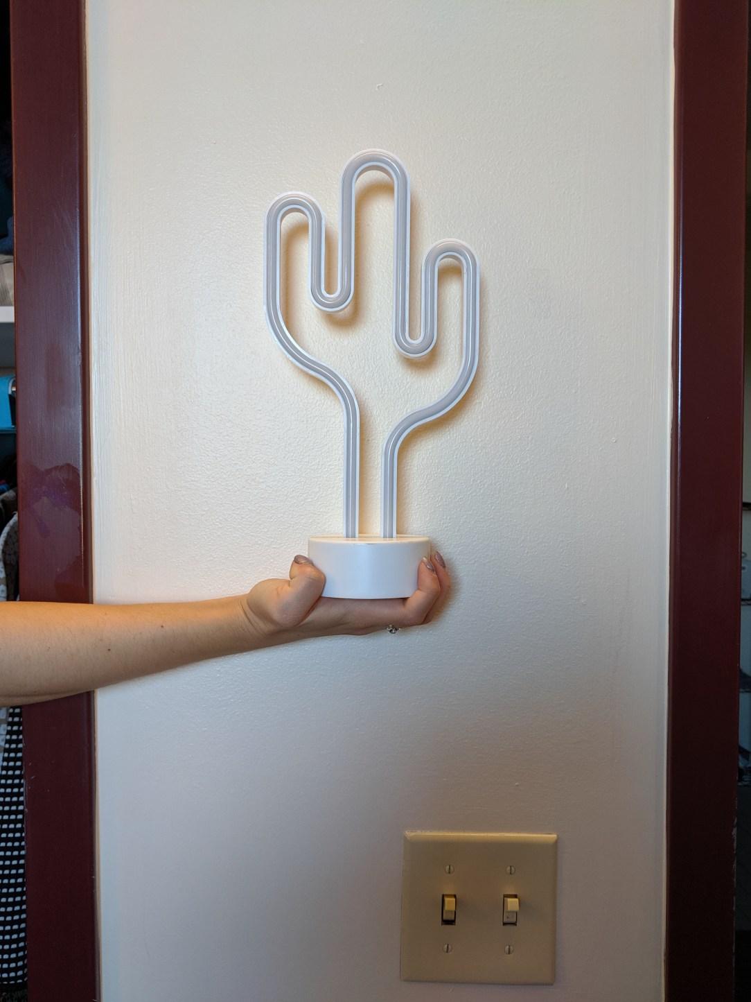 cactus light, Pier 1 Imports