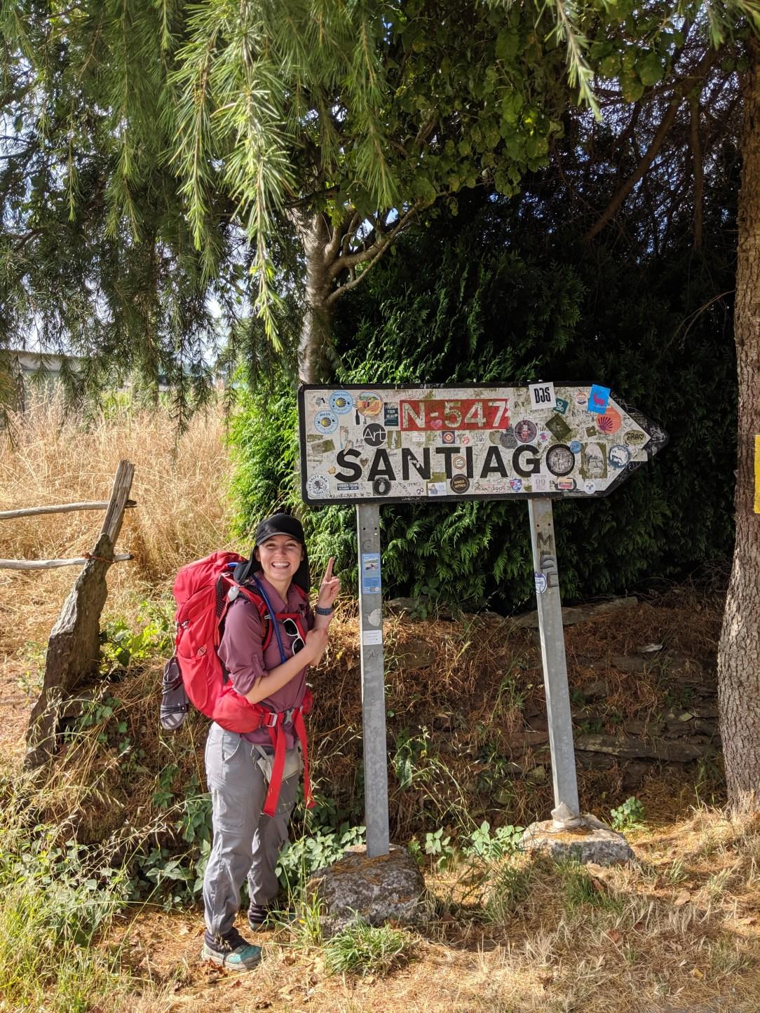 Santiago de Compostela, Camino de Santiago, pilgrimage