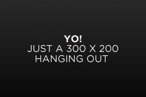 Image Alignment 300x200
