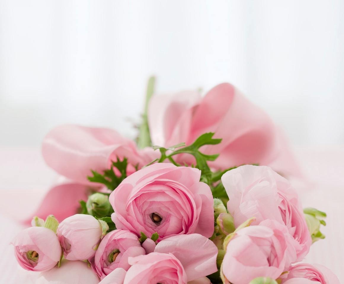 roses-bouquet-congratulations-arrangement-68570