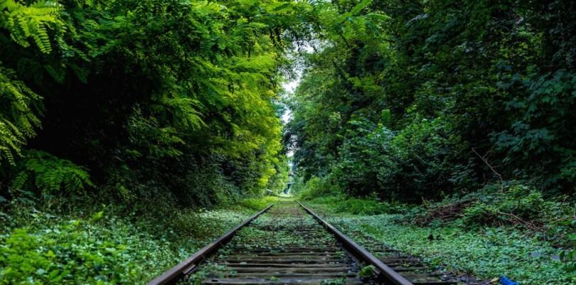 cropped-railroad1.jpg