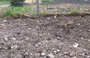 dug ground illustrating raised bed garden