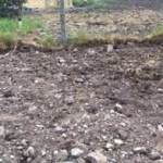 dug ground illustrating raised bed garden
