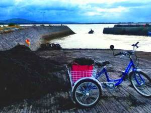 World Food Day - image of a trike with a basket of seaweed