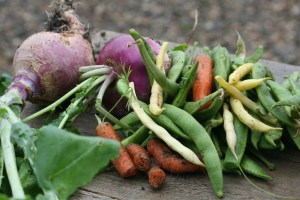 home-grown vegetables illustrating an article about permaculture