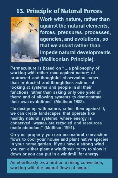 13. Permaculture Attiudinal Principles