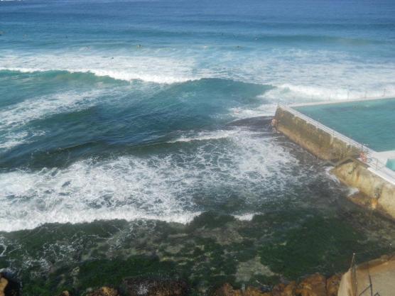 The epic waves at Bondi--Bondi Beach, Sydney, Australia