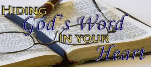 Hiding-Gods-Word-0626141