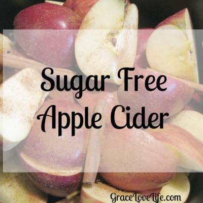 Sugar Free Apple Cider