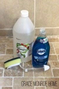 Dawn & Vinegar Shower Cleaner