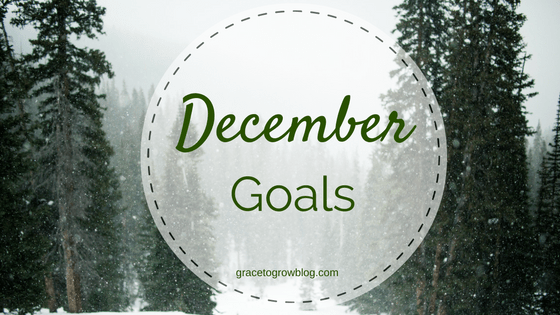 December Goals | Grace to Grow Blog