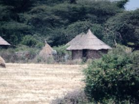 Some indigenous housing, on the road to Meki
