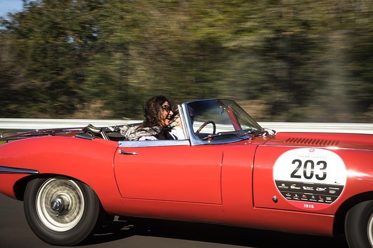 jaguar track day vintage gracie opulanza