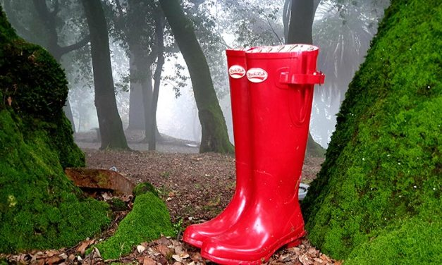 Rockfish Rubber Boots – Countryside Comfortable Footwear