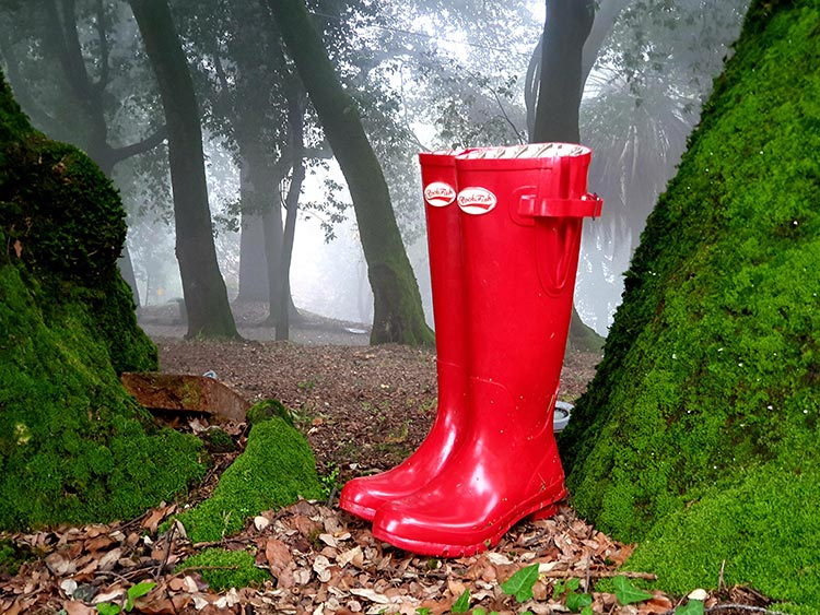 Rockfish Rubber Boots - Countryside Comfortable Footwear