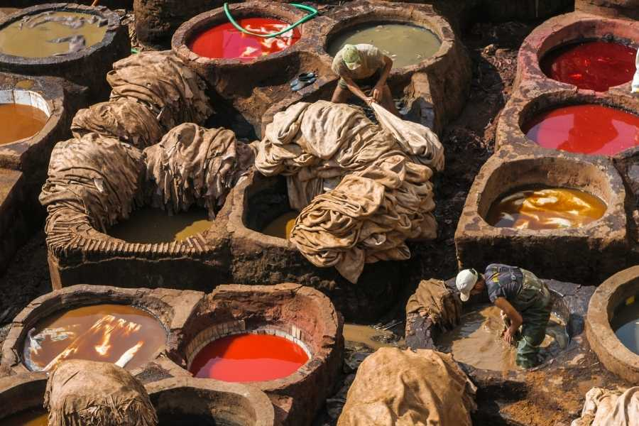 Chouara tannery during a trip to Fes in Morocco leather pits for dying