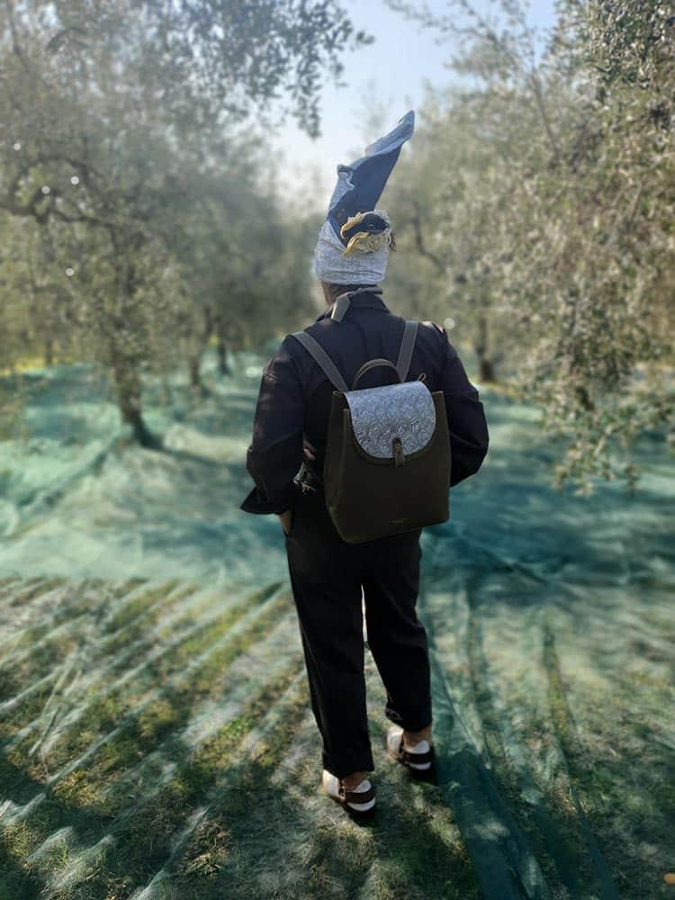 Olive oil Tuscany Italy