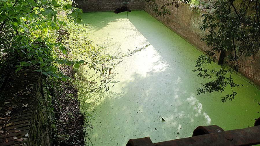 Tuscan Ponds