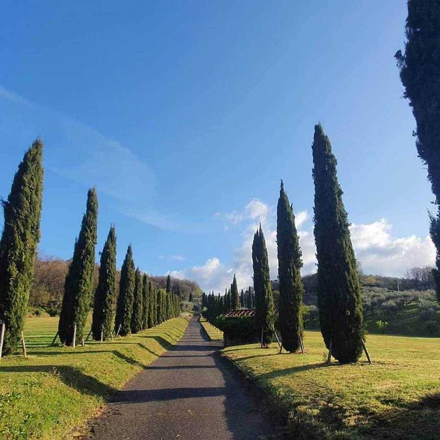 Tuscany 2021
