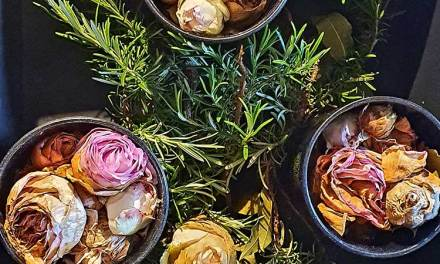Wellness – Dried Roses Gift Ideas