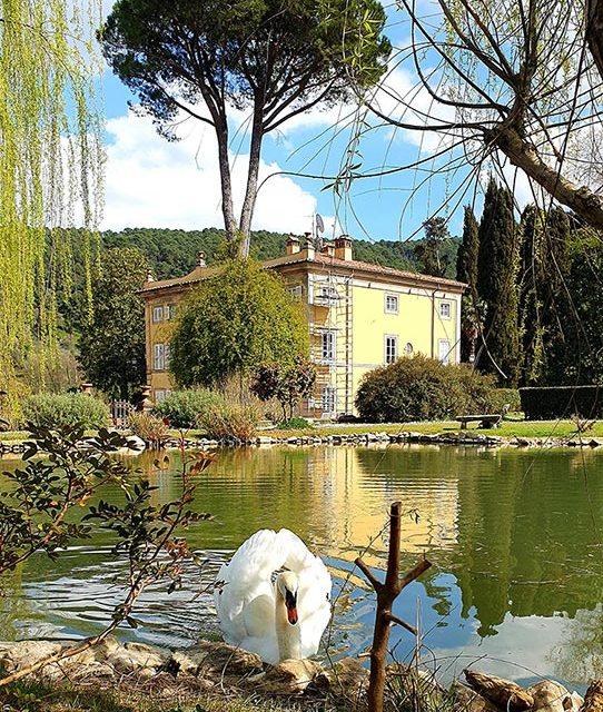 Swan lake Tuscany Villa for sale