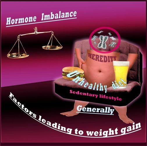 Factors Which Contribute to Weight Gain