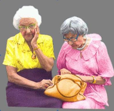 two-little-old-ladies-best-dried-arrangement