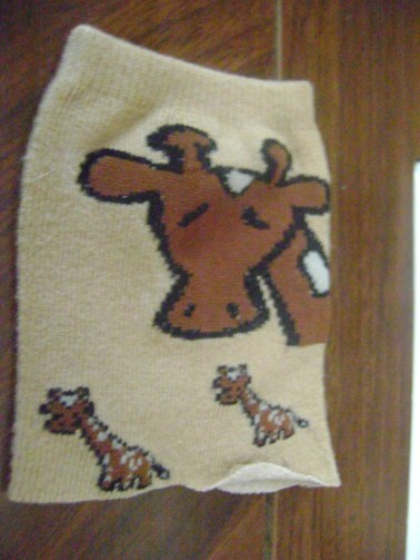 A chocolate moose 051