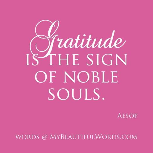 Gratitude 22